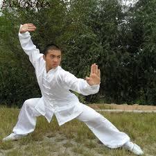 Estilos de Kung Fu Madrid