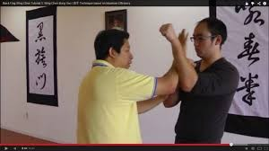Wing Tsun Black Flag