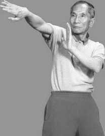 Técnicas de Wing Tsun de Ip Chun