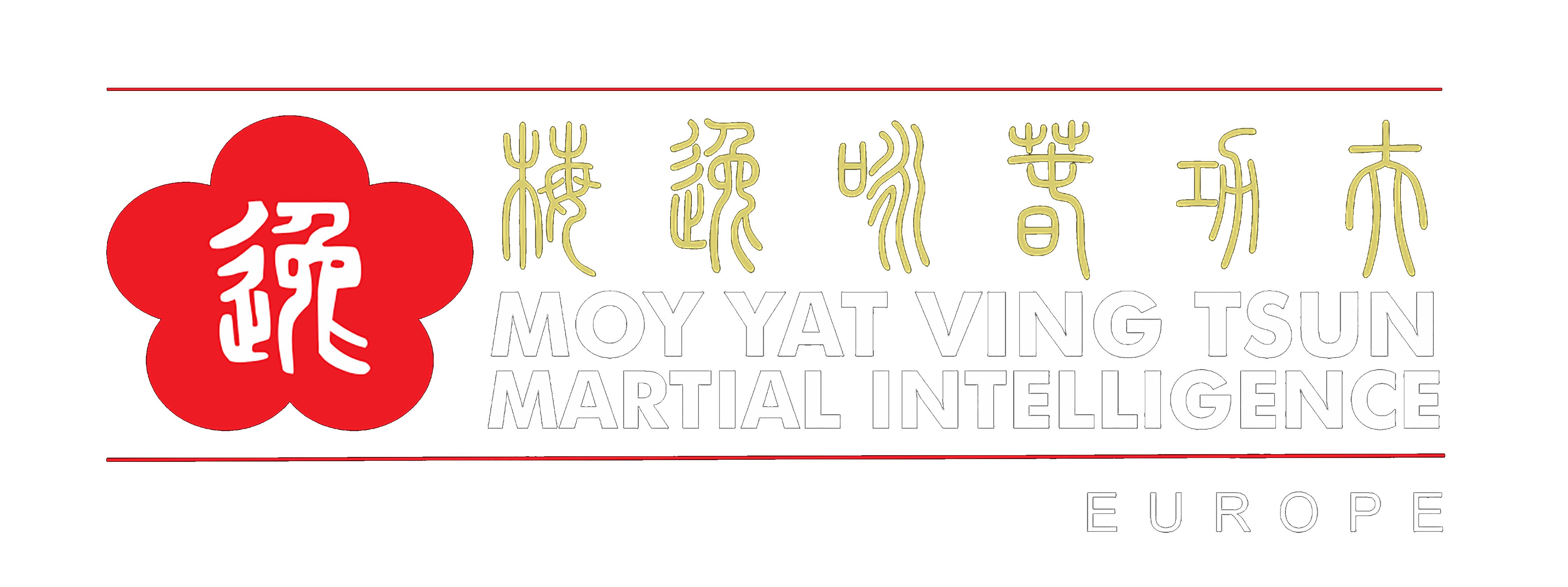 Wing Tsun - Clases de Wing Chun Kung Fu en España - Spain 咏春功夫西班牙 e